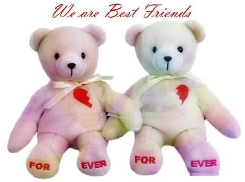 We Are Best Friends Forever Teddy Bear Graphic