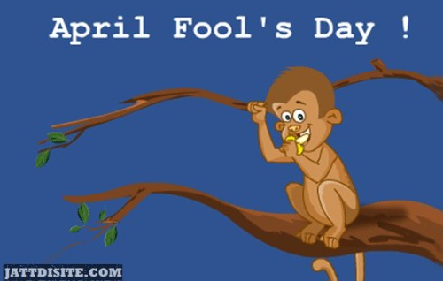 April Fools Day Monkey Animated Graphic