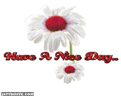 Awesome Good Day Greeting