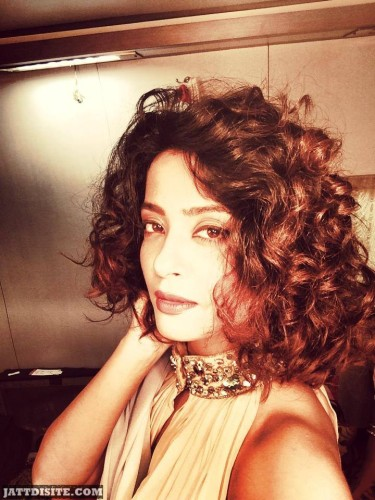 Awesome Hairstyle Of Surveen Chawla