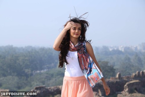 Awesome Photography Of Surveen Chawla