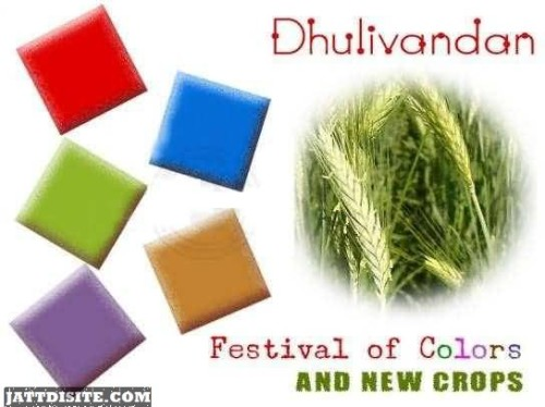 Dhulivandan Festival Of Colors And New Crops Graphic