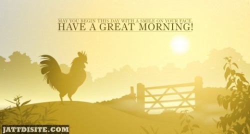 Have A Great Morning
