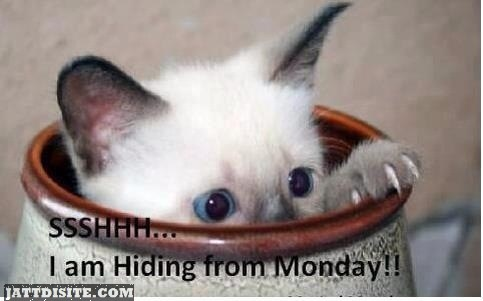Hidding For Monday
