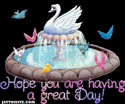 Hope You Are Having A Great Day