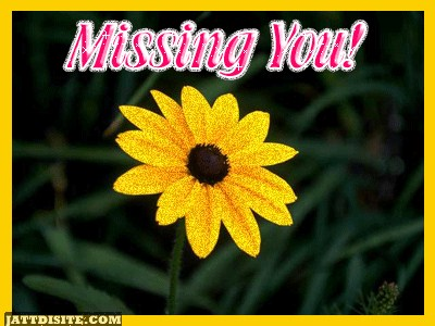 Missing You with Flower