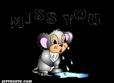 Mouse Missing You