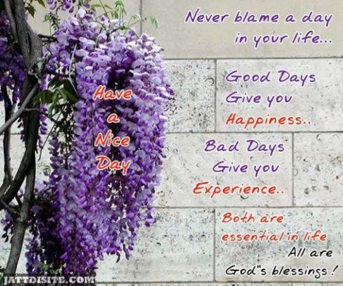 Never Blame A Day In Your Life