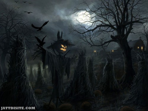 Scare Crow For Halloween