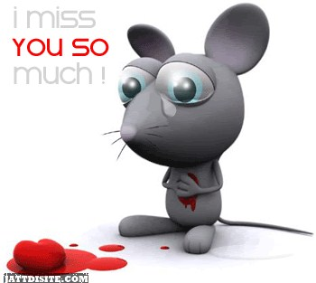 So Much Miss you