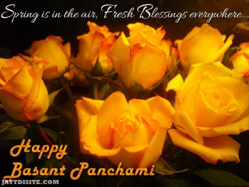 Spring Is In The Air Fresh Blessings Everywhere Happy Basant Panchami
