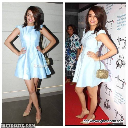 Surveen Chawla Poses For Pic