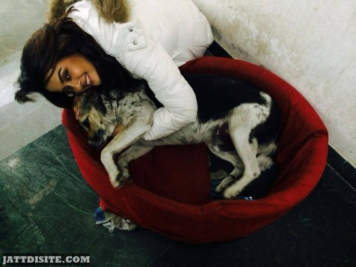 Surveen Chawla With His Dog1