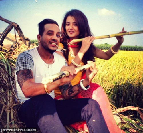 Surveen Chawla With Jazzy B At Farms