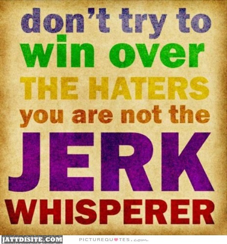dont-try-to-win-over-the-haters-you-are-not-the-jerk-whisperer-quote-1