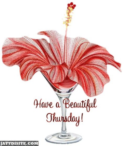 Beautiful Thursday