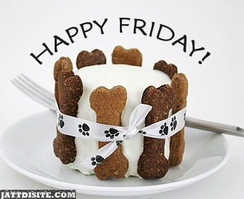 Happy Friday For Dog
