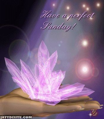 Have A Perfect Sunday