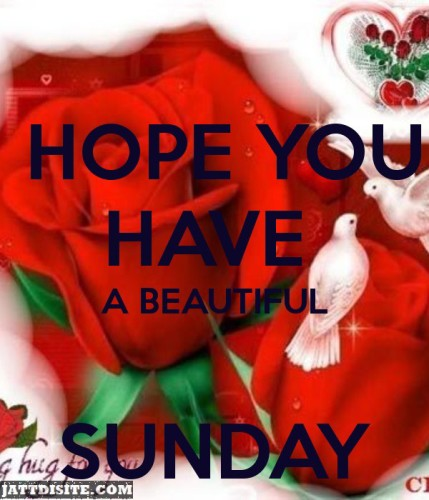 Hope You Have A Beautiful Sunday