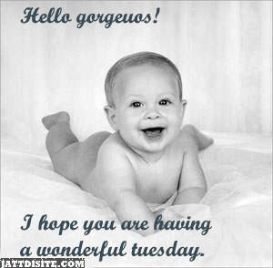 Hope You Having The Wonderful Tuesday