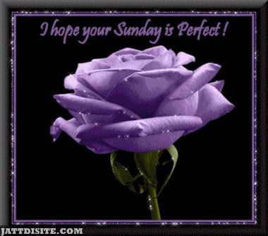 Hope Your Sunday Is Perfect