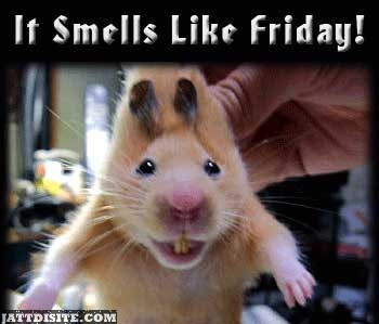 It Smell Like Friday