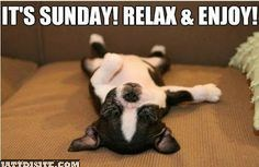 Its Sundau Enjoy & Relax