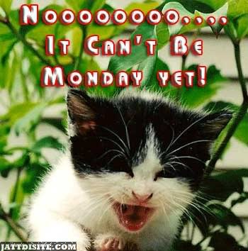 Nooo It Cant Be Monday Yet
