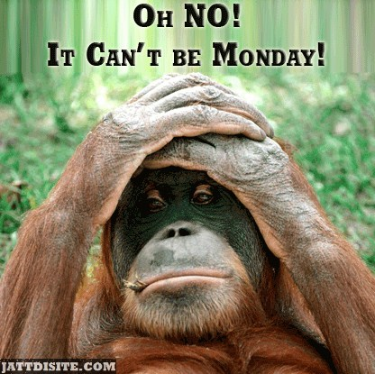 Oh No It Cant Be Monday