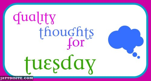 Quility Thoughts For Tuesday
