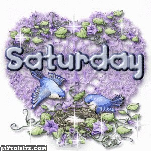 Saturday Enjoy The Day