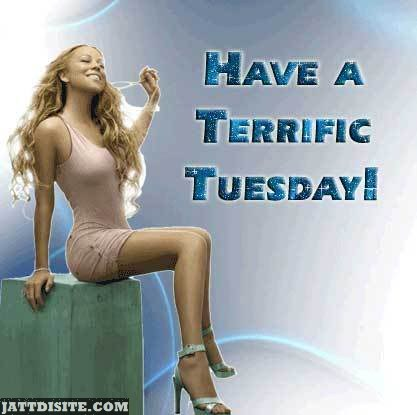Terric Wish For Tuesday