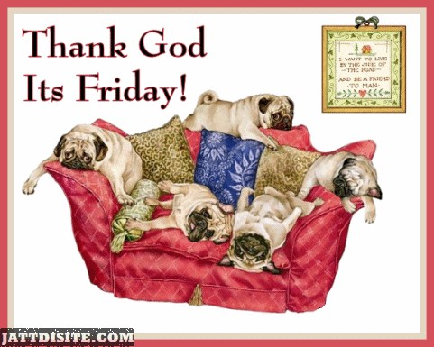 Thank God Its Friday Pug Dogs