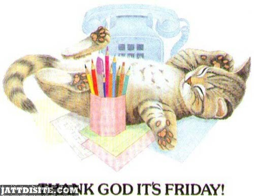 Thank God Its Friday With Cat