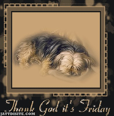 Thank God Its Friday With Puppy