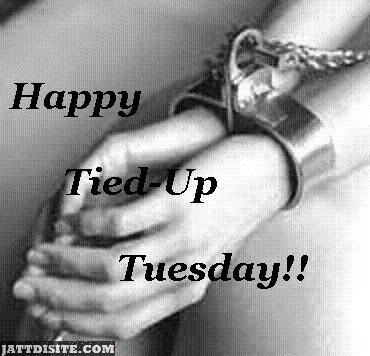 Tied Up Tuesday Wishes