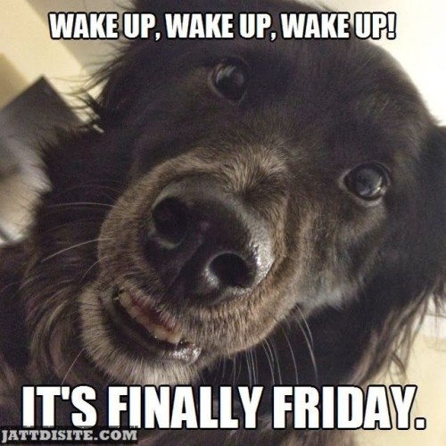 Wake Up Is Friday