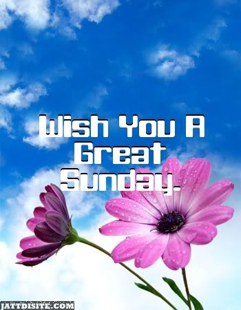 Wish You A Great Sunday