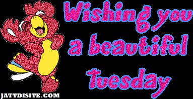 Wishing You A Wonderful Tuesday