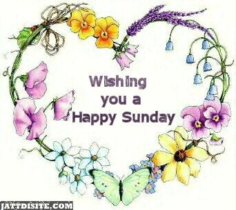 Wishing You Happy Sunday
