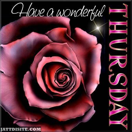 Wonderful Thursday