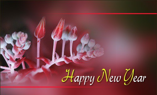.Happy New Year Graphicl