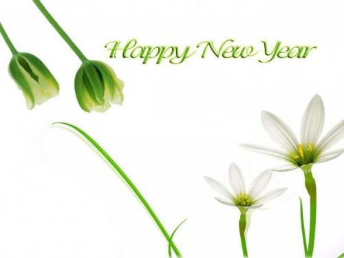 Happy New Year Greeting flowre