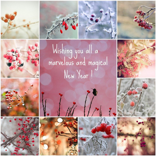 Wishing You All A Marvelous & Magical New Year!