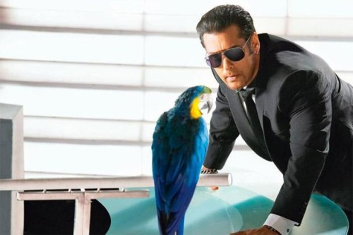 Salman Khan With Colourful Parrot