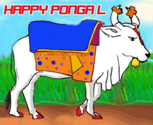 Happy Pongal Bull Graphic For Share On Facebook