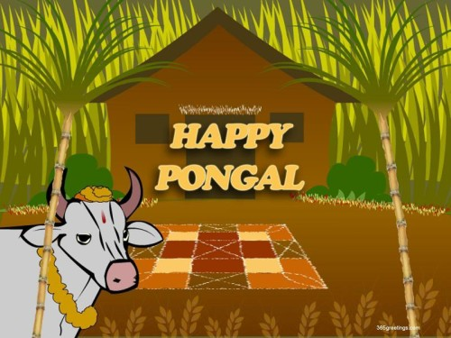 Happy Pongal Bull Graphic For Share On Myspace