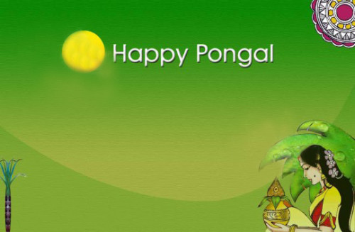 Happy Pongal Greeting Card For You