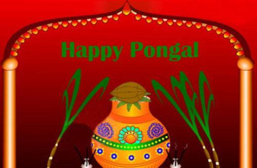 Happy Pongal Greeting Ecard