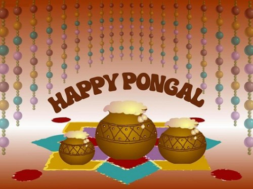 Happy Pongal Pots Filled With Curd Graphic